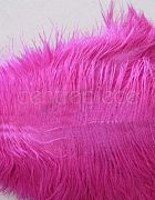Ostrich Feather Pink Large