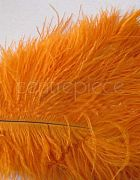 Ostrich Feather Orange Large