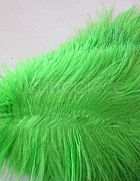 Ostrich Feather Green Large