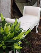 Chaise French White