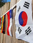 Bunting World Flags