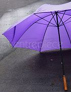 Umbrella Golf (Purple)
