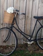 Bicycle Vintage With Basket