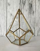 Terrarium Tear Drop Shape Gold