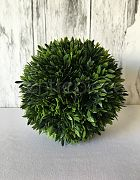 Topiary Ball - Podocarpus Green Med