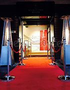 Carpet and Stanchion
