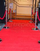Stanchion - Red