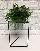Plant Stand Black Triangle Small